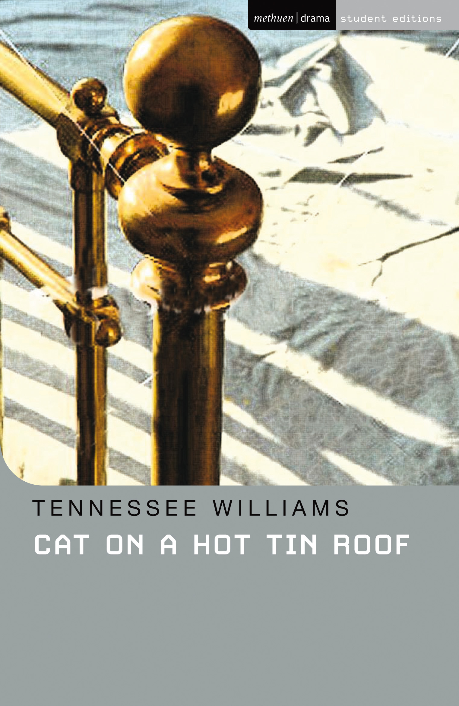 Cat on a Hot Tin Roof: Methuen Student Editions