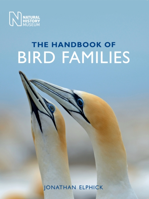 Handbook Of Bird Families