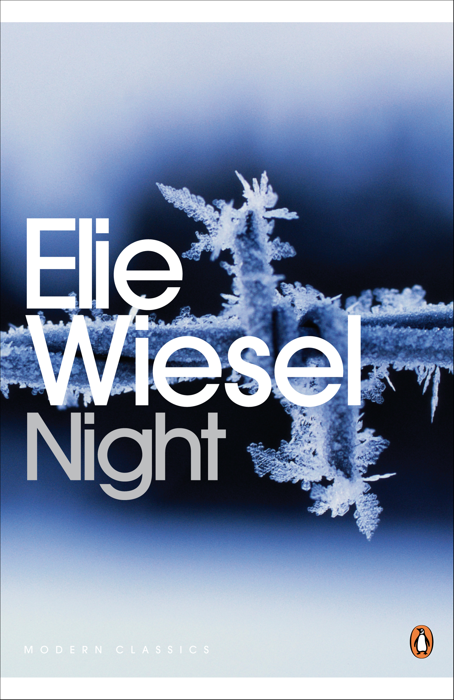 a comparison of torture experienced in night by elie wiesel and the human right violation in libya How did the holocaust affect elie wiesel essays and research the holocaust violated human rights human rights violation: night by elie wiesel are right.