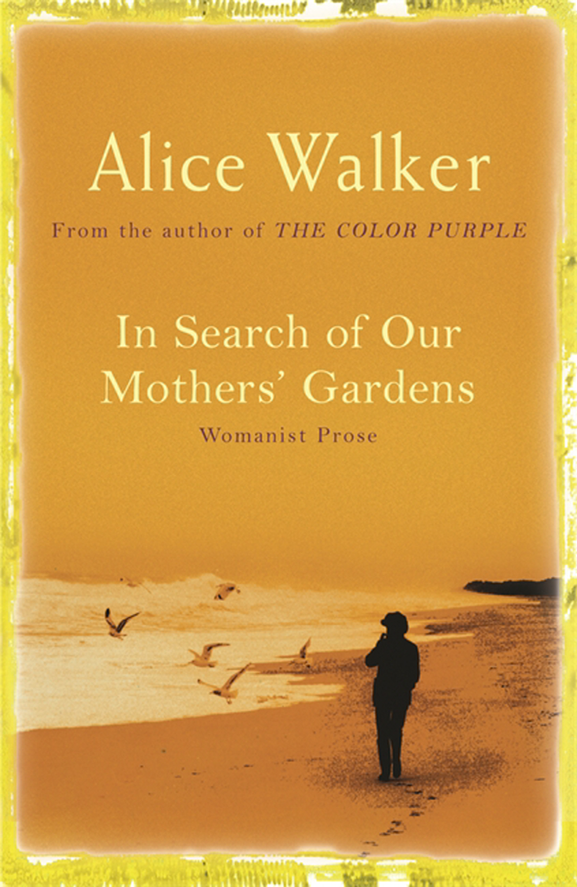 in search of our mothers garden Walker describes jean toomer's exploration of the reconstruction south toomer found women sexually abused and lost, but who he saw to hold power, spirituality and beauty of which they were not aware they were waiting for these unknowns to be made known.
