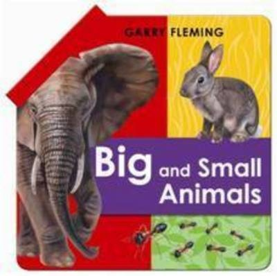 Big And Small Animals Fold Out Book