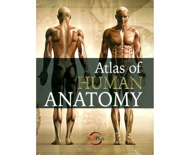 Booko Comparing Prices For Atlas Of Human Anatomy Hb