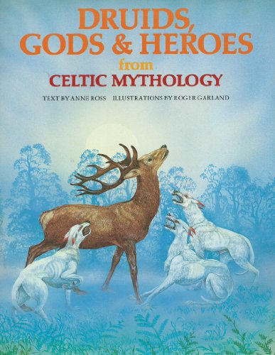 DRUIDS GODS&HEROS/CELT (World Mythologies Series)