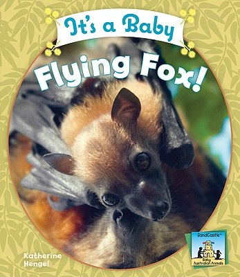 It's a Baby Flying Fox!