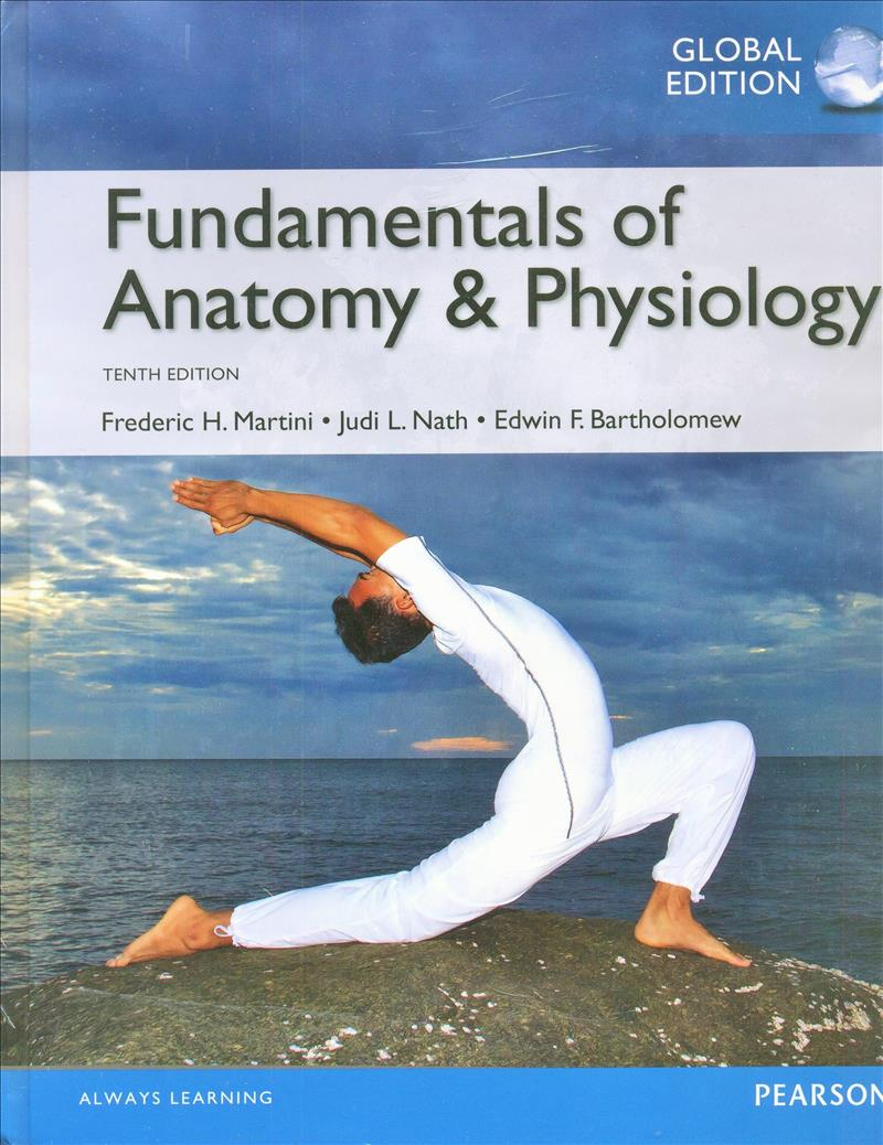 Booko: Comparing prices for Valuepack Fundamentals of Anatomy ...