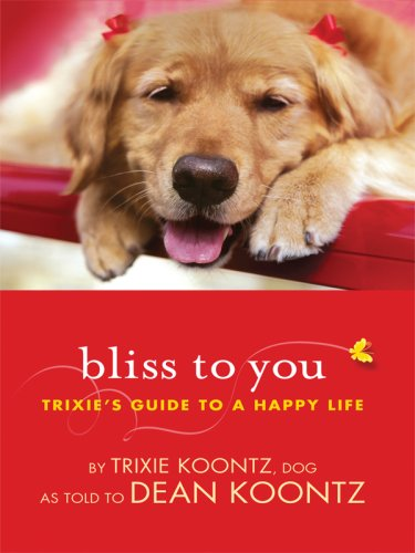 Bliss to You