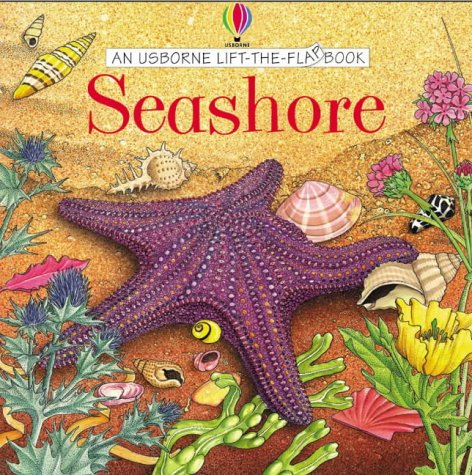 Seashore (Usborne Lift the Flap Learner)