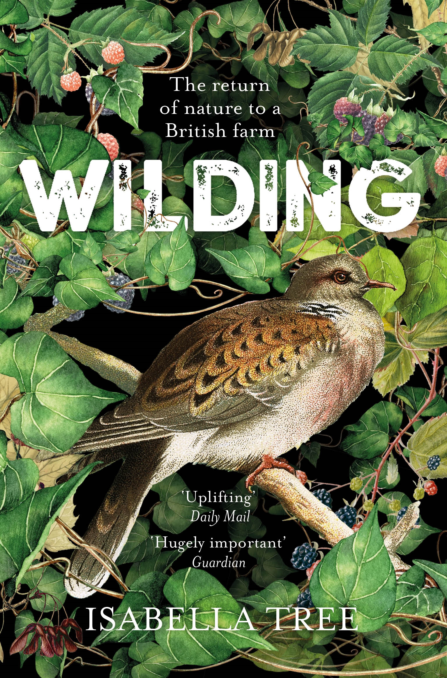Wilding: The return of nature to an English farm by Isabella Tree, ISBN: 9781509805099