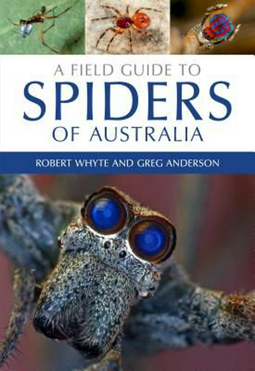 A Field Guide to Spiders of Australia by Greg Anderson, Robert Whyte, ISBN: 9780643107076
