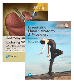 Essentials of Human Anatomy & Physiology, Global Edition + Anatomy and Physiology Coloring WorkbookA Complete Study Guide, Global Edition