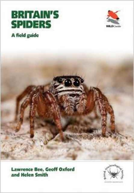 Britain's Spiders: A Field Guide (WILDGuides) by Lawrence Bee & Geoff Oxford & Helen Smith, ISBN: 9780691165295