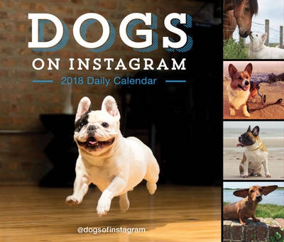 2018 Daily Calendar: Dogs on Instagram