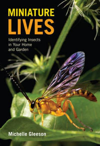 Miniature LivesIdentifying Insects in Your Home and Garden