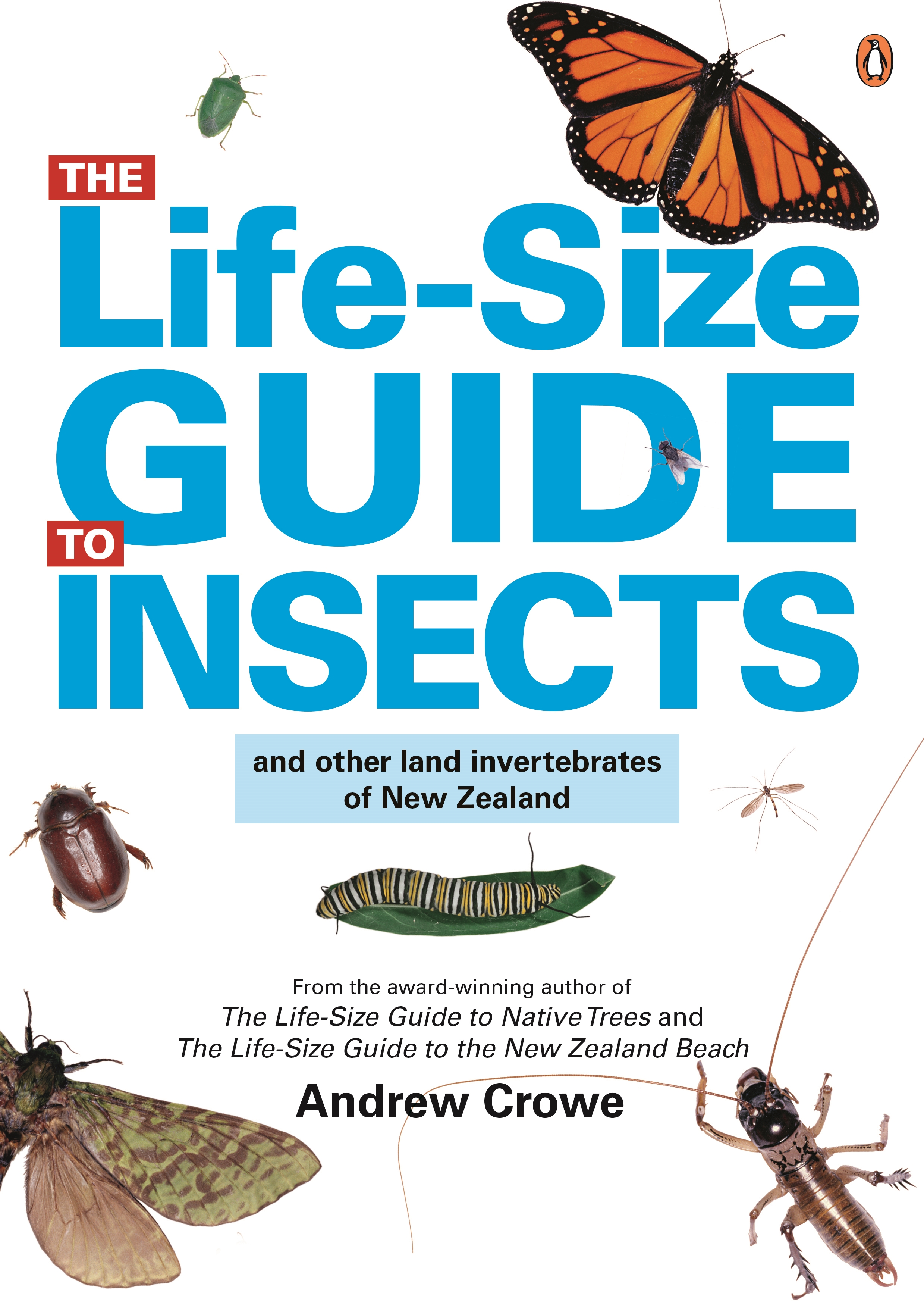 The Life Size Guide to Insects & Other Land Invertebrates of New Zealand