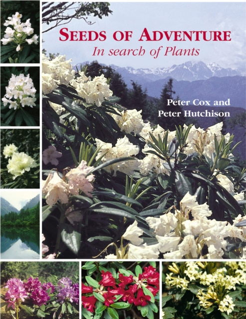 Seeds of Adventure: In Search of Plants by Peter Cox, ISBN: 9781870673587