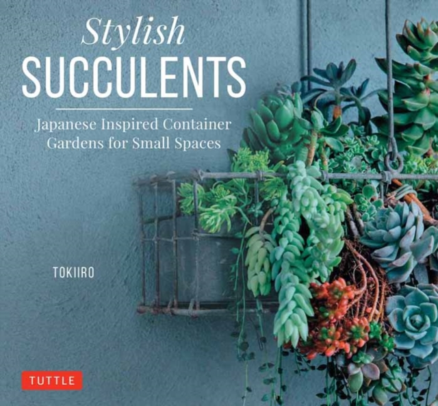 Stylish SucculentsJapanese Inspired Container Gardens for Small S...