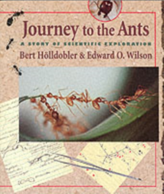 Journey to the Ants by Bert Holldobler, ISBN: 9780674485266